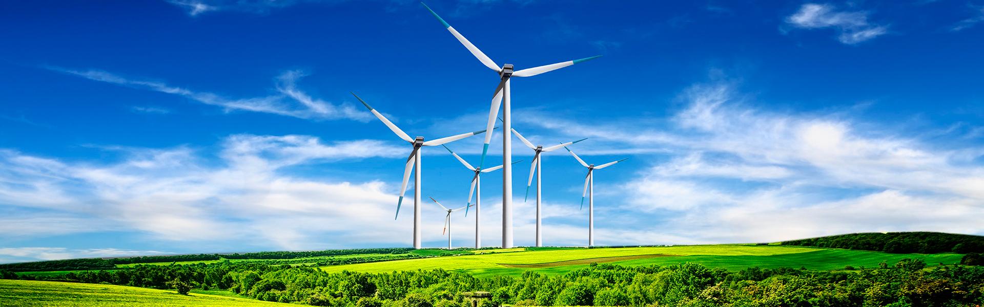 Sua empresa sustentável